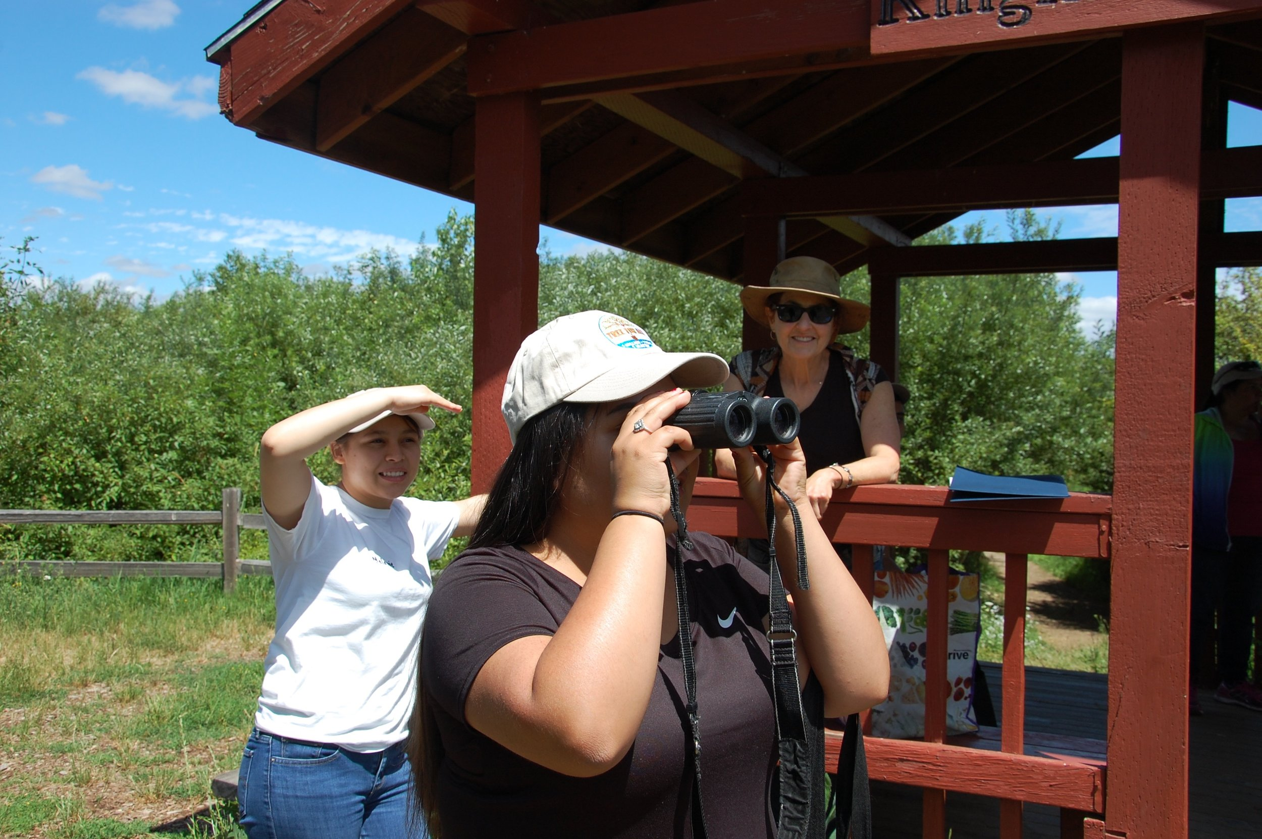 A Bilingual Naturalist, Karla, peers through binoculars at a bald eagle soaring above Fernhill Lake while others cool off in the shade.
