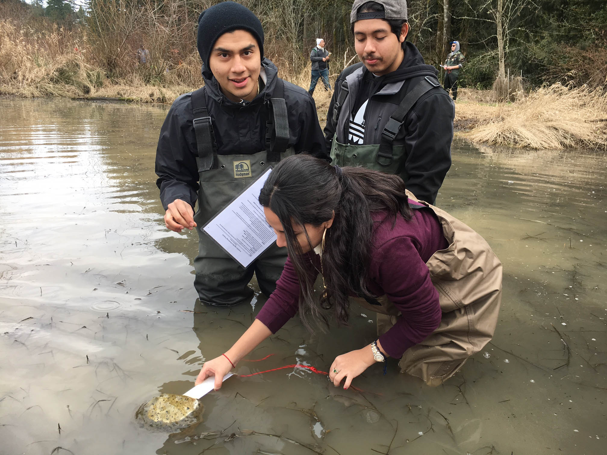 Students from Portland Community College assist with amphibian monitoring.