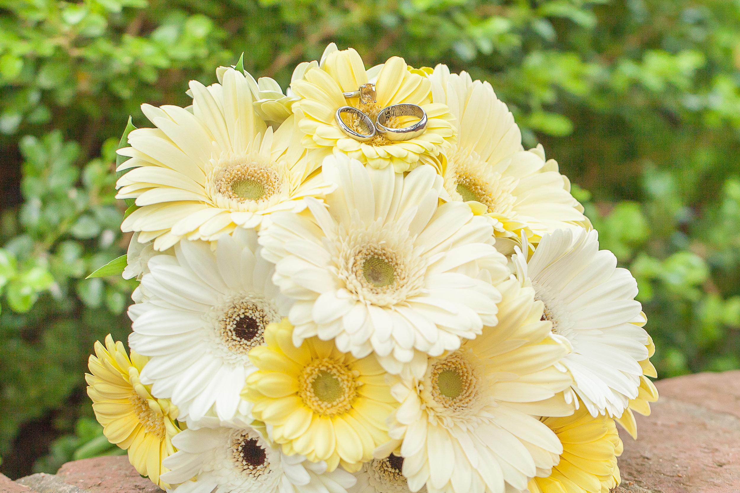 K-S-Wedding-Kim-Pham-Clark-Photography-285.jpg