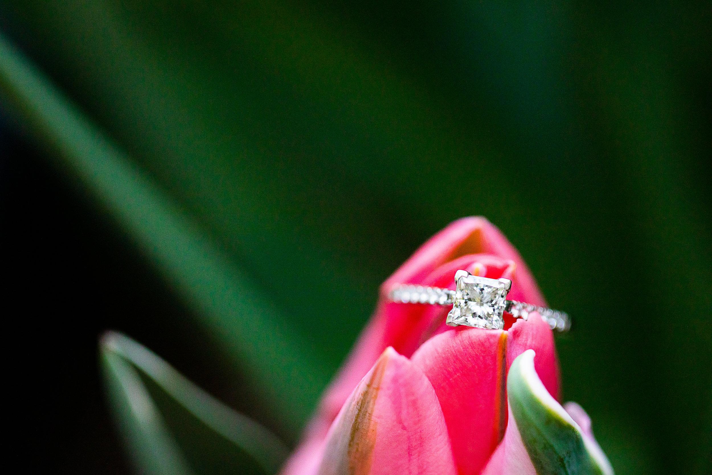 20 Trina-Ed-Engagement-Kim-Pham-Clark-Photography-91.jpg
