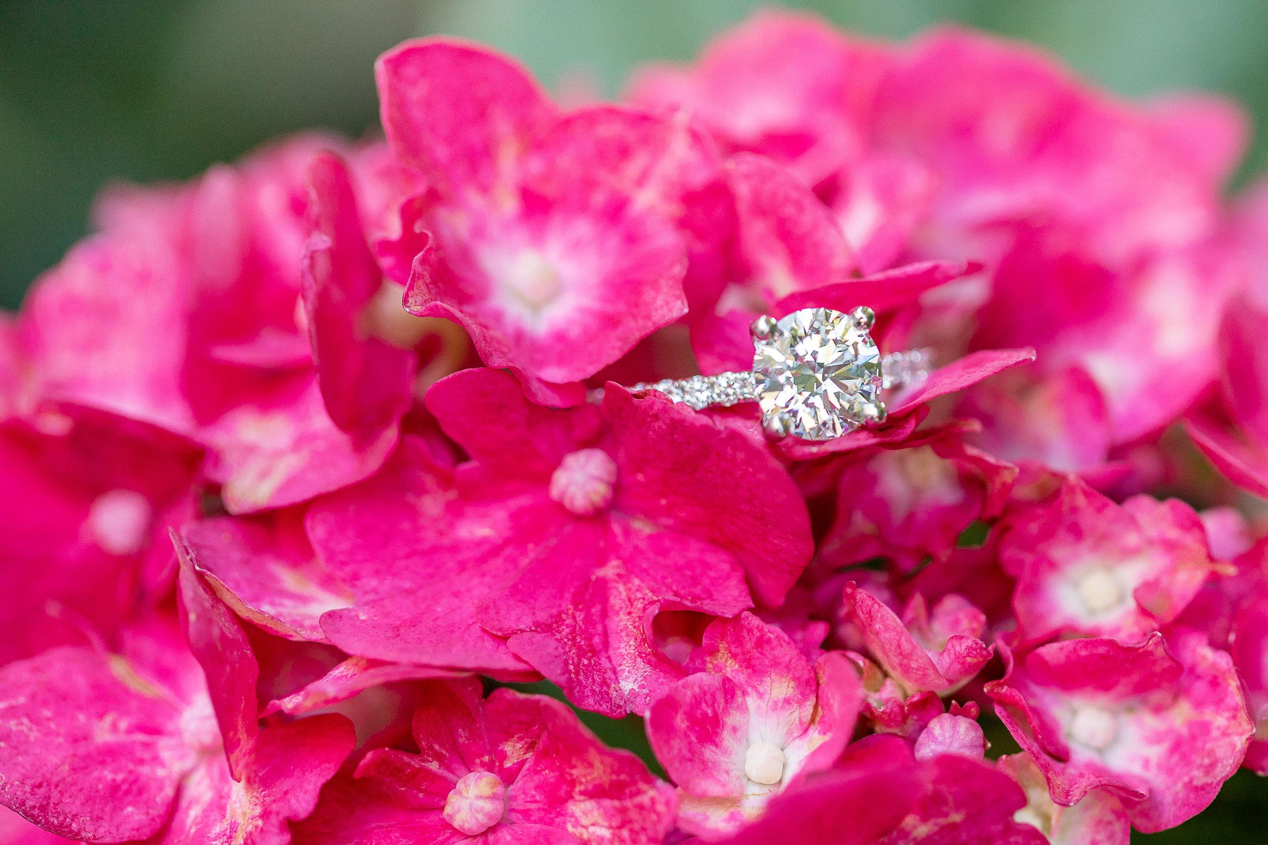 l1 Tammy-Louis-Engagement-Kim-Pham-Clark-Photography-39.jpg