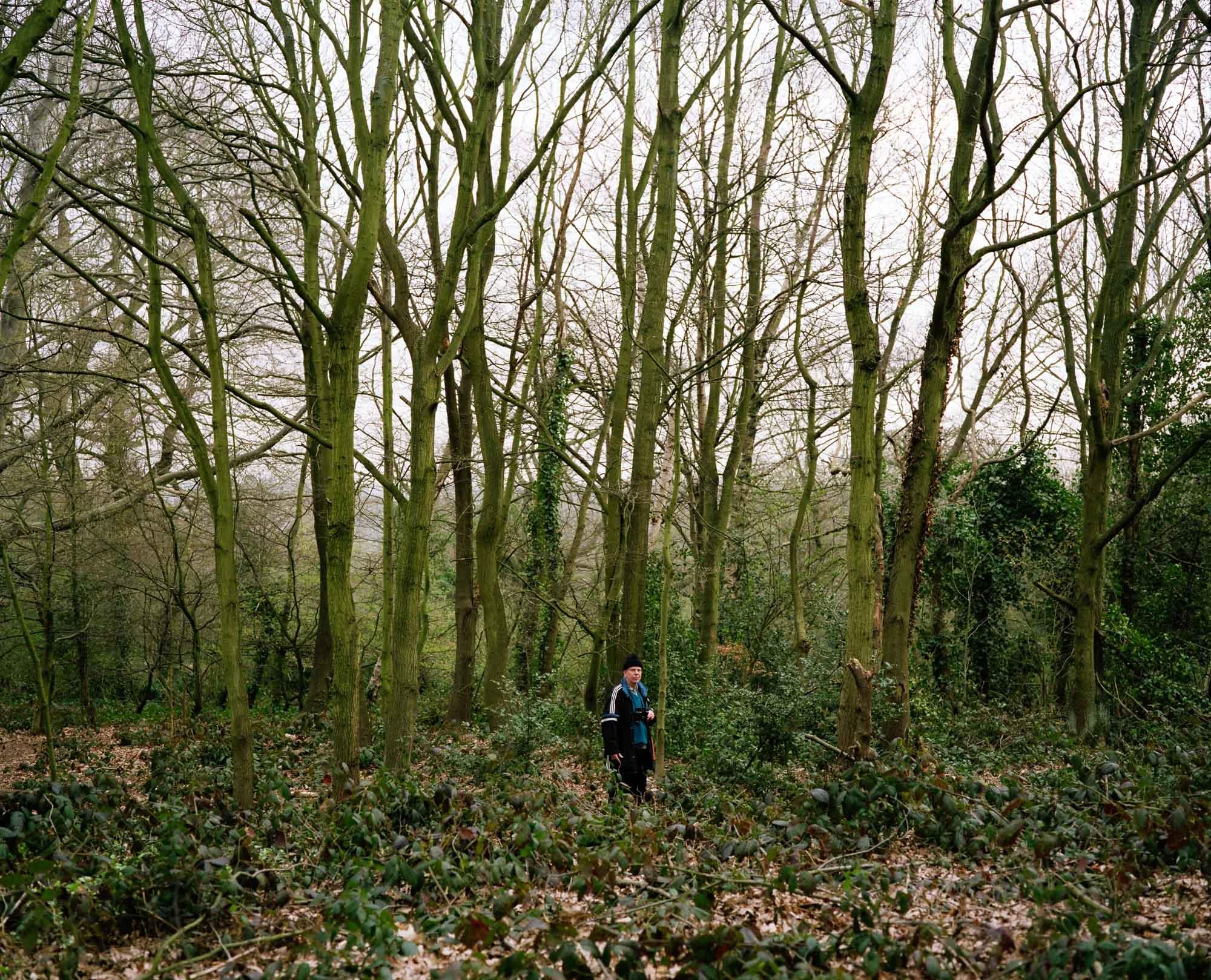 Heath 02.jpg