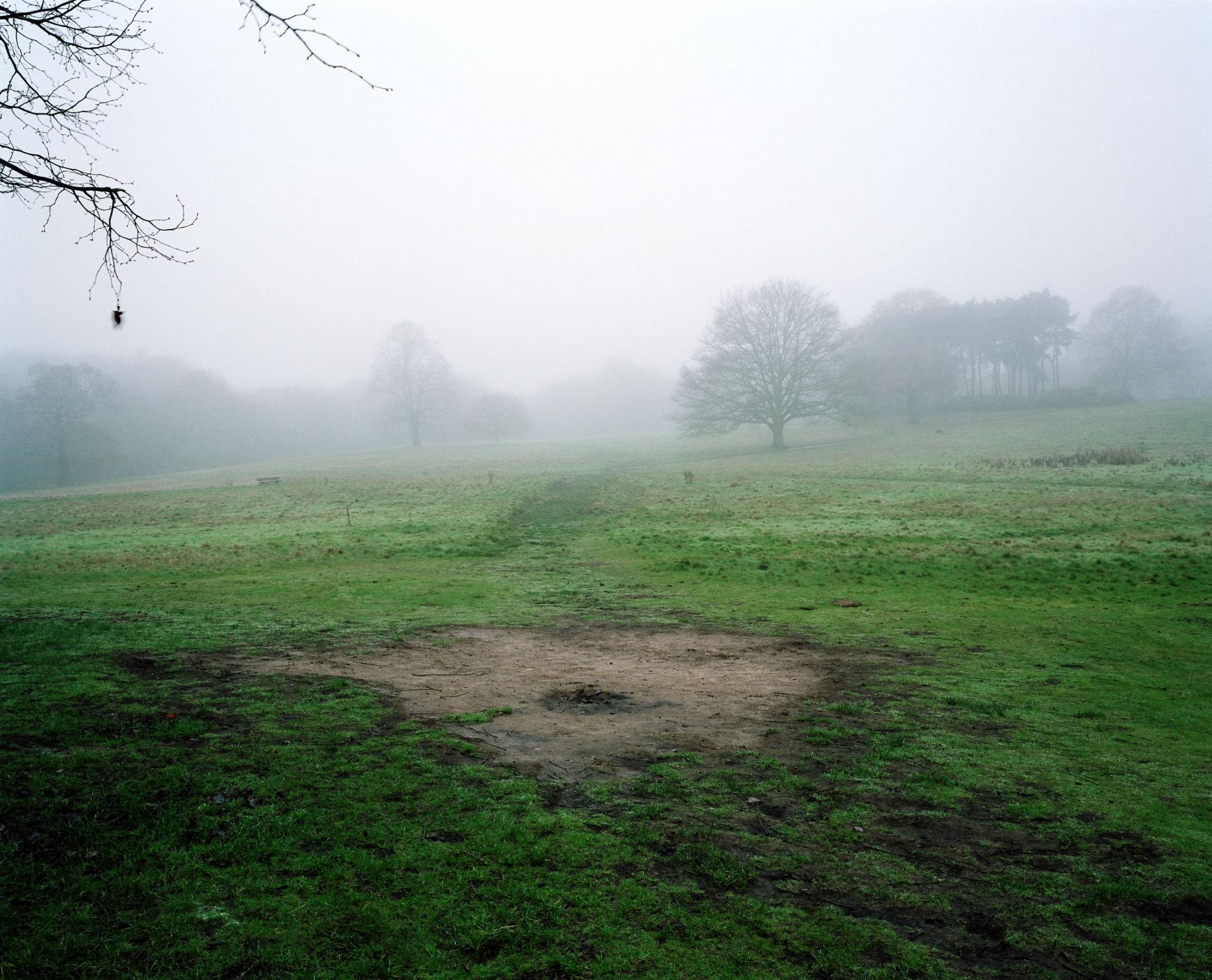 Heath 04.jpg