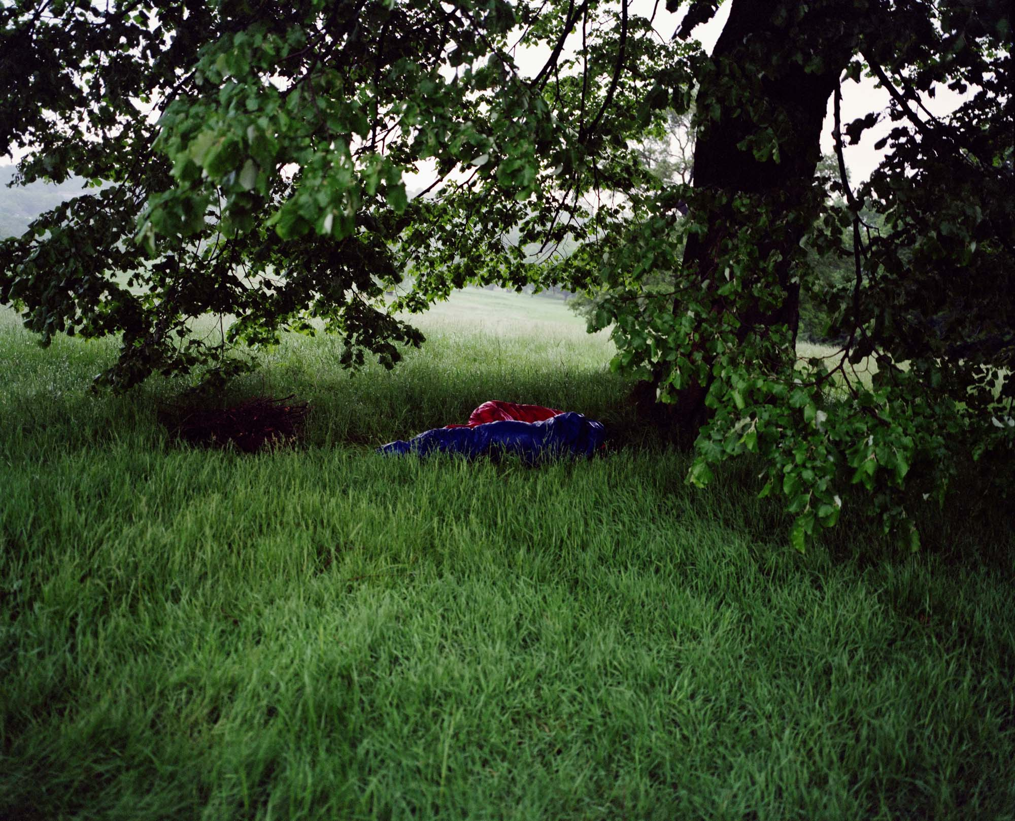 Heath 30.jpg