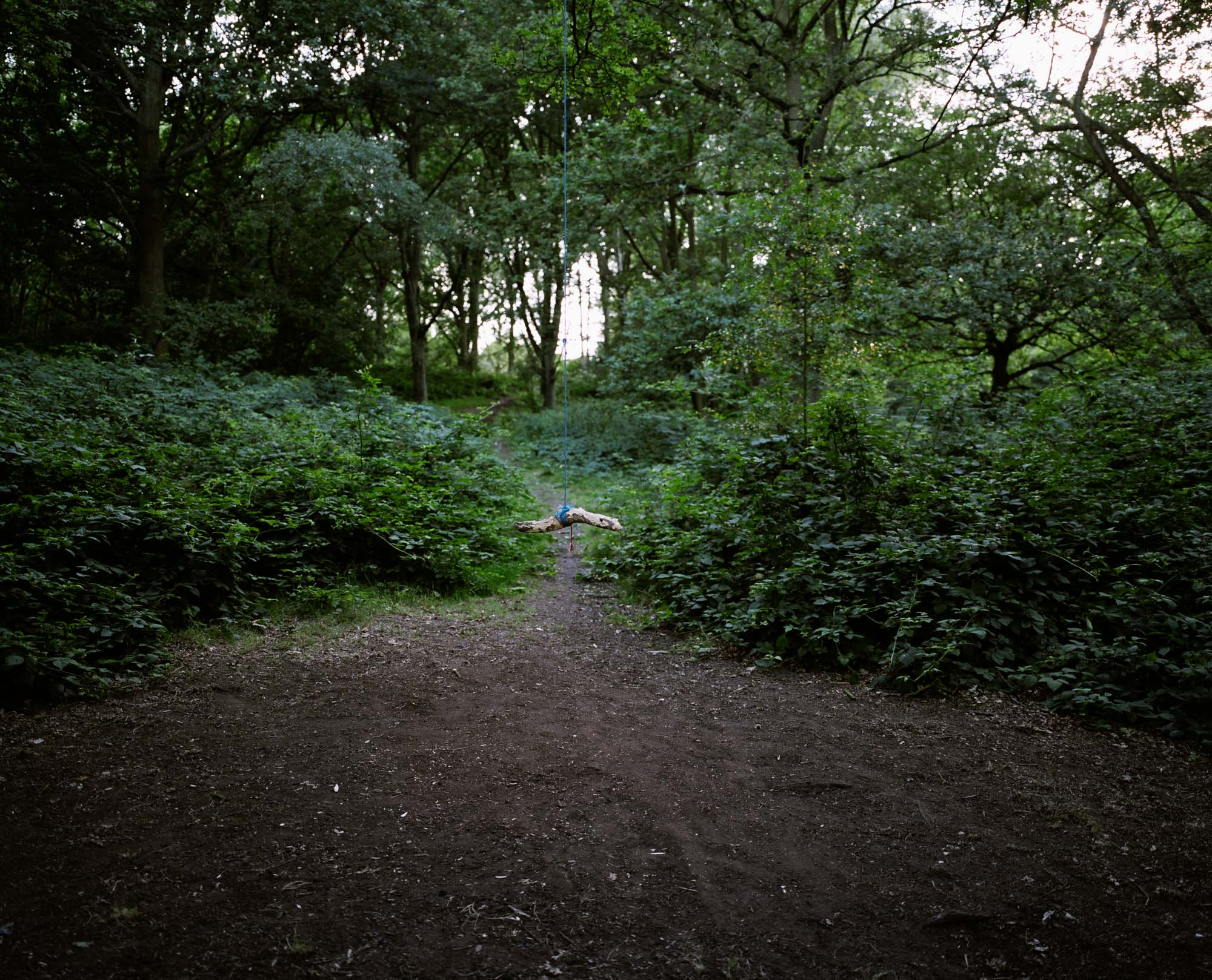 Heath 37.jpg