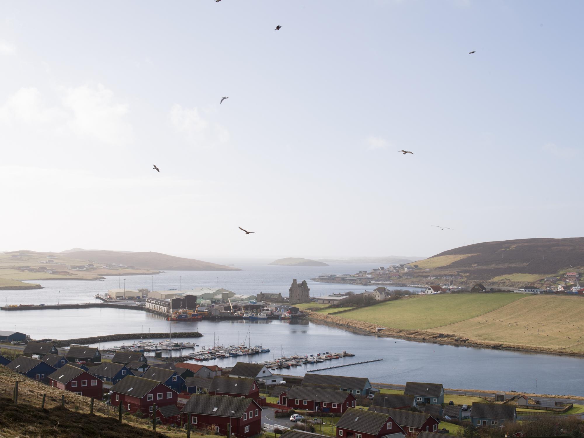 Shetland07.jpg