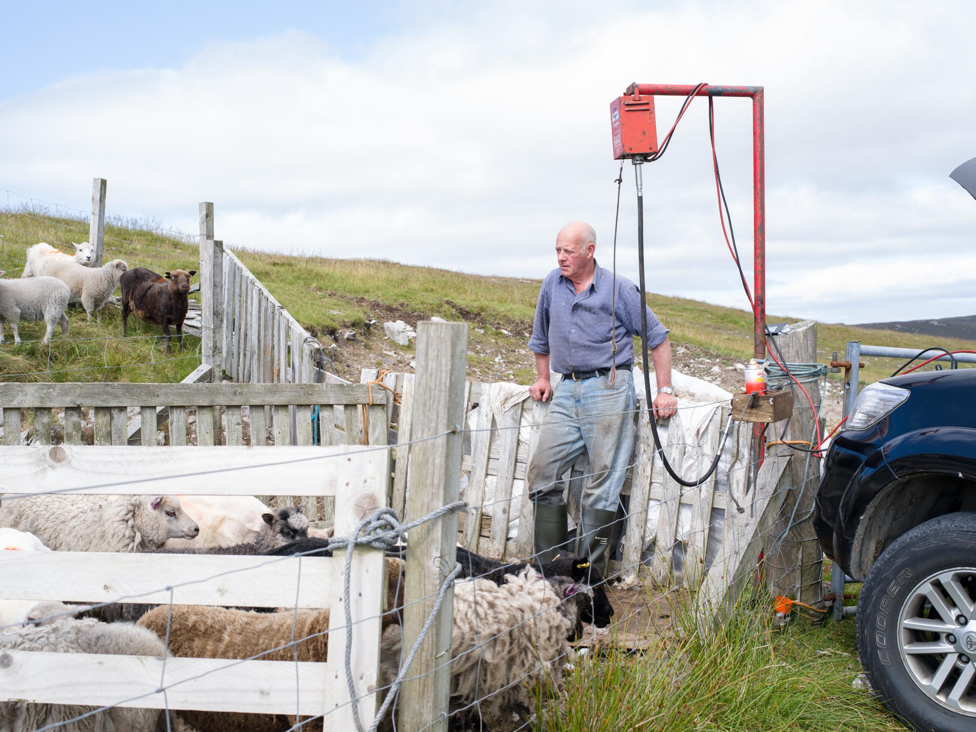 Shetland09.jpg