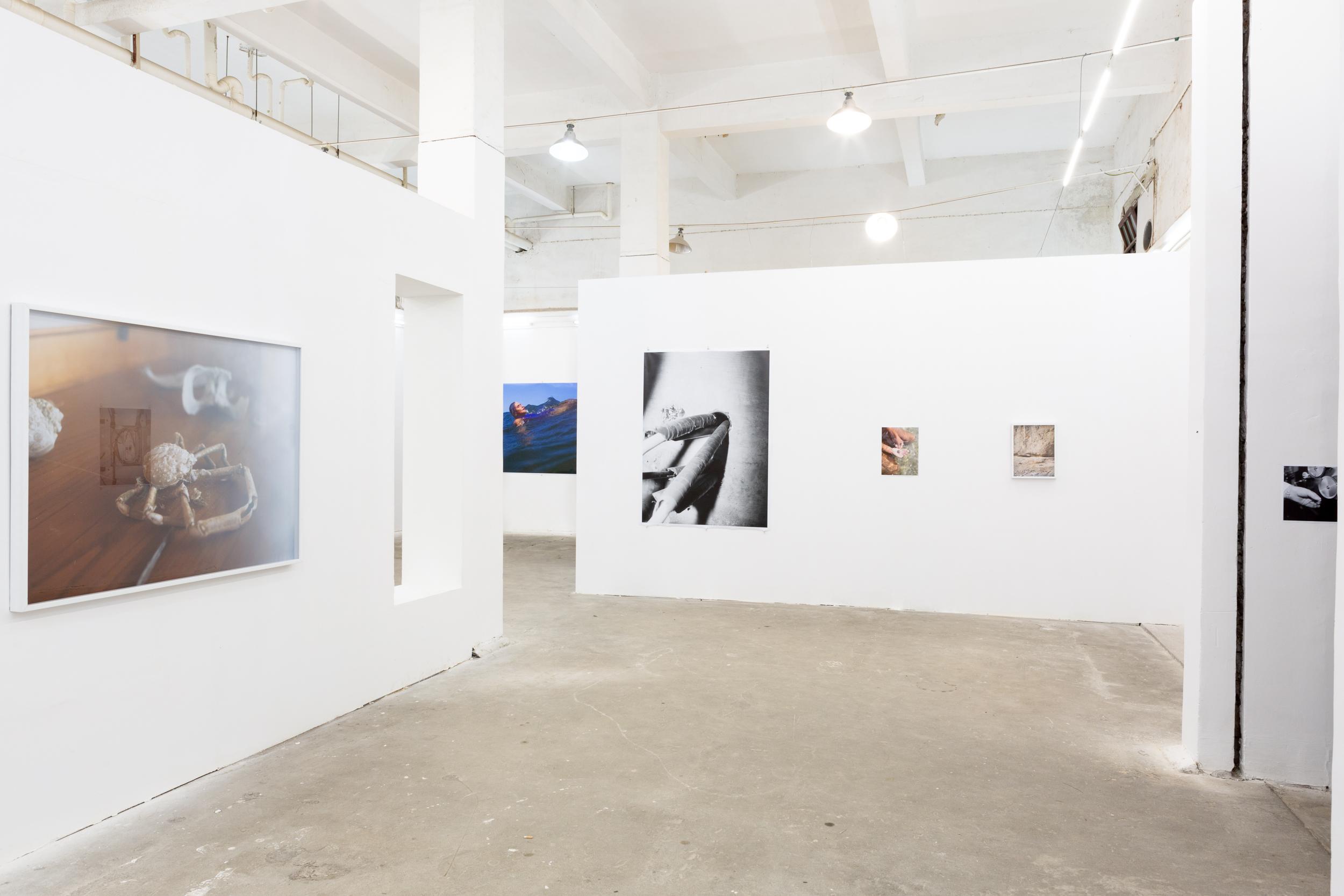 Exhibition, Lianzhou China.
