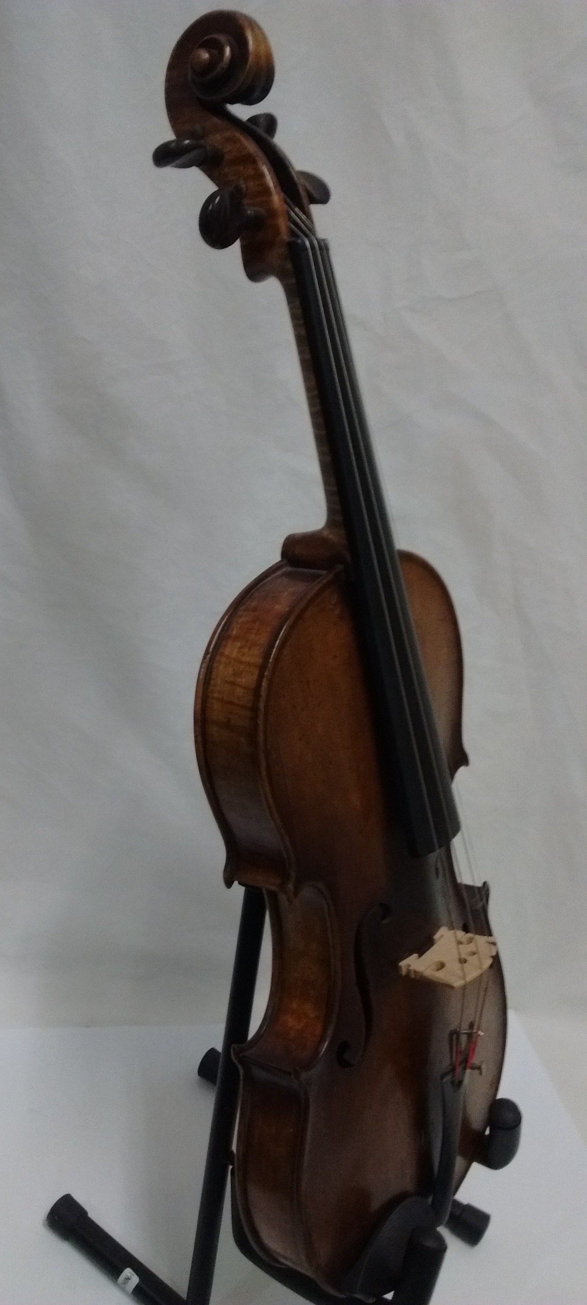 AmatusFiddle-SideView.jpg
