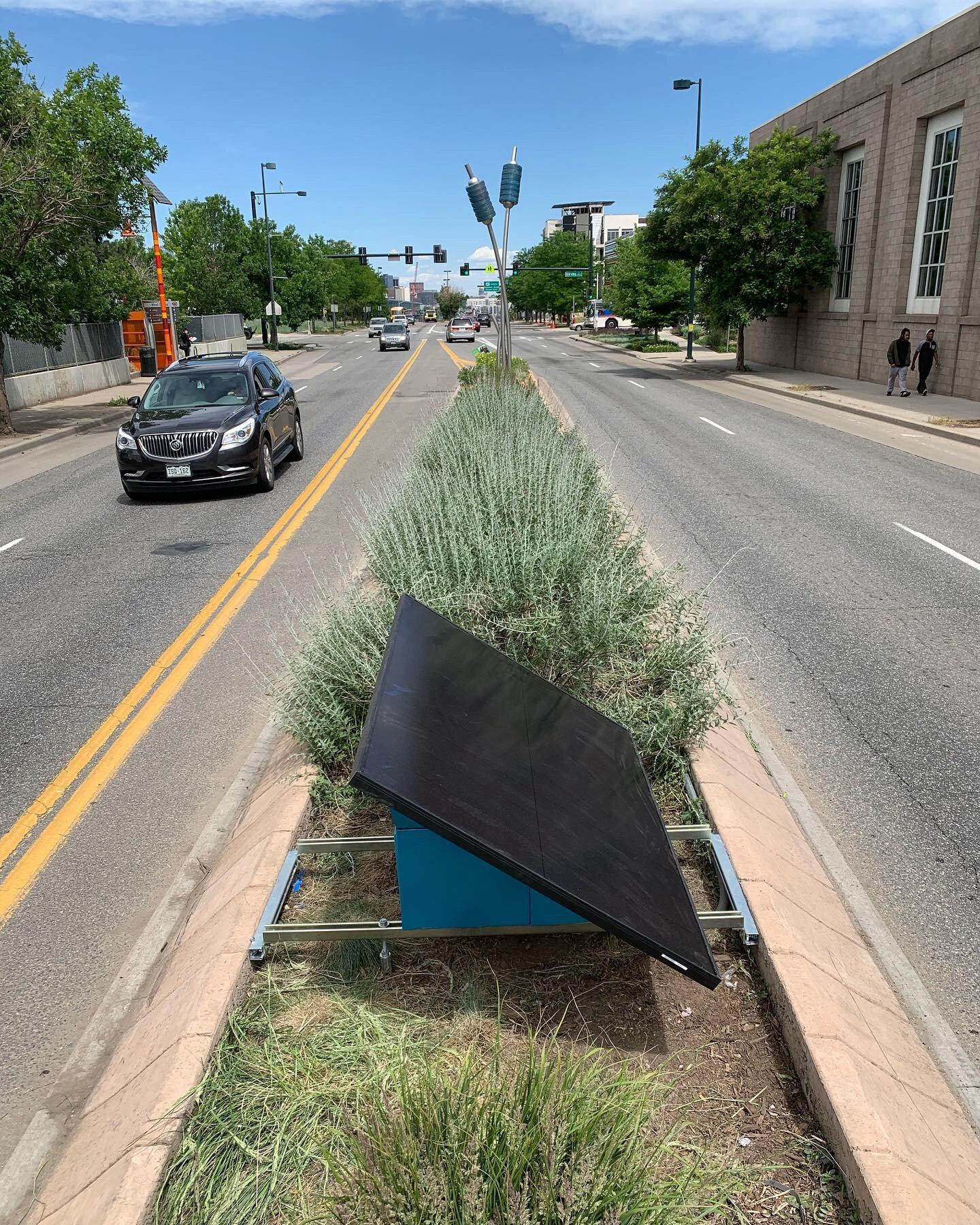 West Colfax Typha | Solar Module