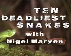 Ten-Deadliest-Snakes-With-Nigel-Marven.jpg
