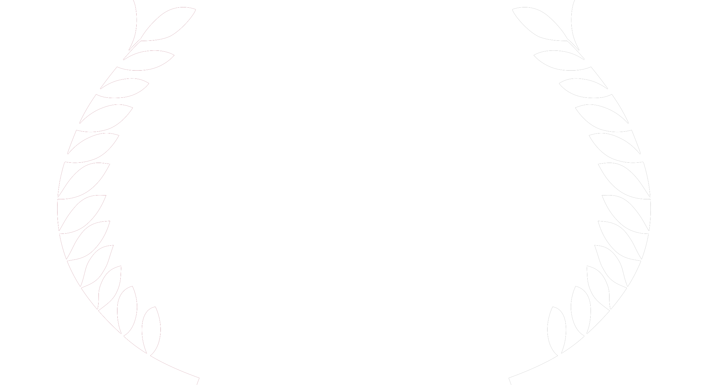 British Wildlife Photographer Award Highly Commended 2015.png