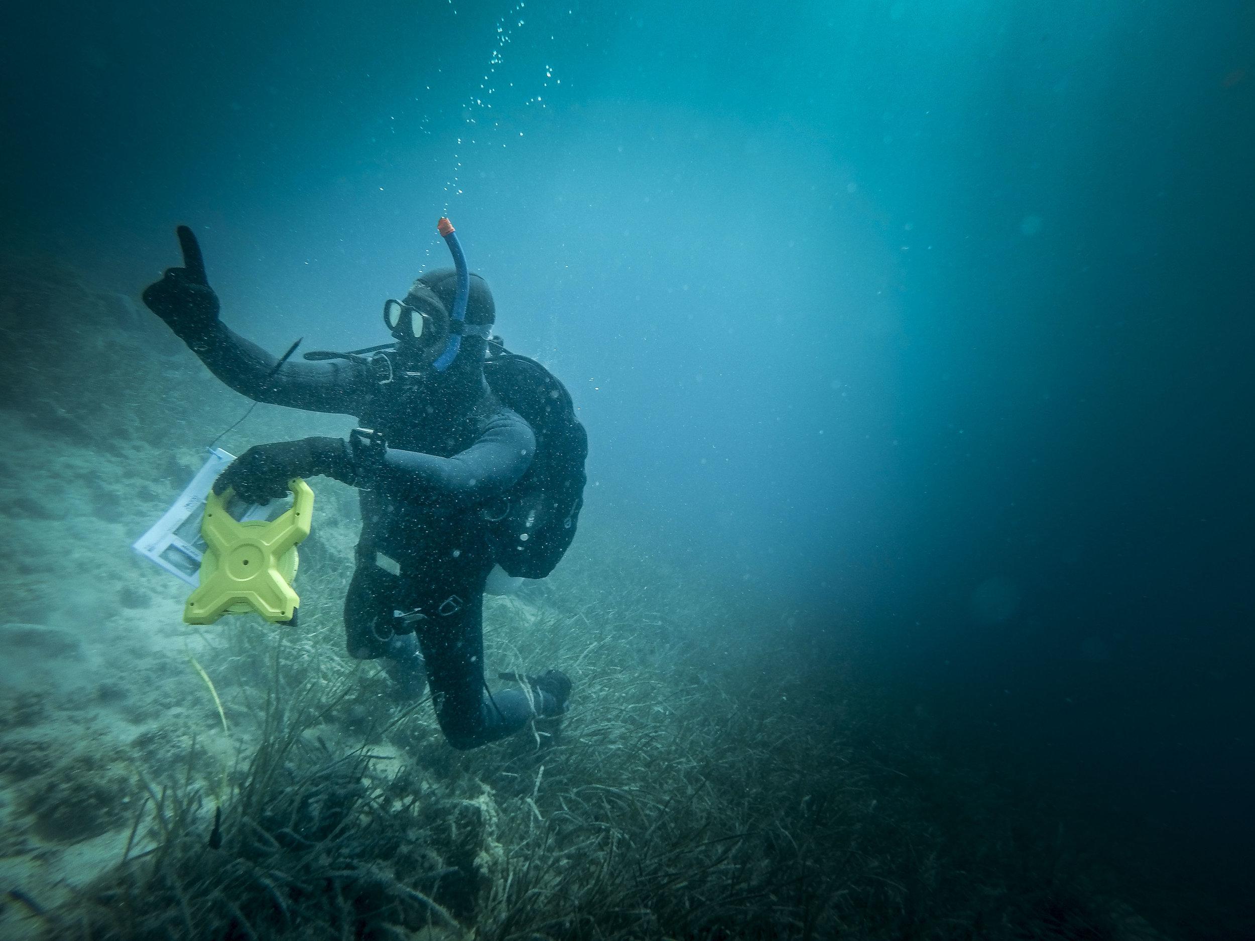 Croatia Mljet Underwater Shots00.jpg