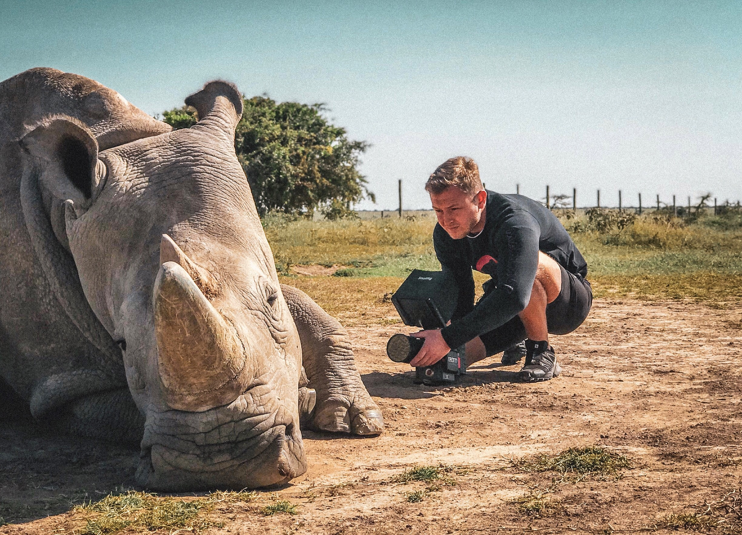 THE LAST NORTHERN WHITE RHINOS