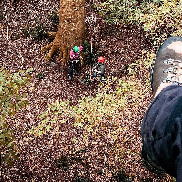 """Canopy Certified"" (Pt 2)  Last week many of you may have seen that I was monkeying around in the tree tops from my stories. It was all practice, fun and games for something a little more important which was getting my Canopy Access qualification for filming, rigging up and rescuing people from canopy scenarios when I'm either here in the UK or abroad in tropical rainforests.  It was an intense week of learning physically and mentally, some thing's were completely new to me and others were a case of recapping.  After climbing and learning solidly for a week straight I can officially say I'm now certified thanks to the teachings of, wisdom and knowledge from @jamesaldred1 and @sam.preston.549 . These guys really know their stuff and I consider them to be the best for anyone looking to going into the tree tops.  I also had help from and met some great peeps on the course in the form of a power rangers stunt double @corey_jeepers, tree surgeon/all round arboreal nomad @tomrose_arb and @brionycj who's worked on and is working on some exciting new natural history documentaries.  All in all a great week all round and cannot wait to get out there and put my new skills into productions!  #canopy #canopyaccess #tree #treeclimbing #climbing #petzl #arborial #rope #iphone #iphonex #adobe #adobelightroommobile #oak #nationaltrust #stourhead #stourheadgardens #stourheadnationaltrust #mamut #cameraman #cameraoperator #wildlife #wildlifecameraman #wildlifecameraoperator #naturalhistory #nature #naturephotography #landscapephotography"