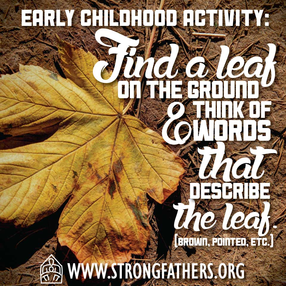 Find a leaf on the ground and think of words that describe the leaf