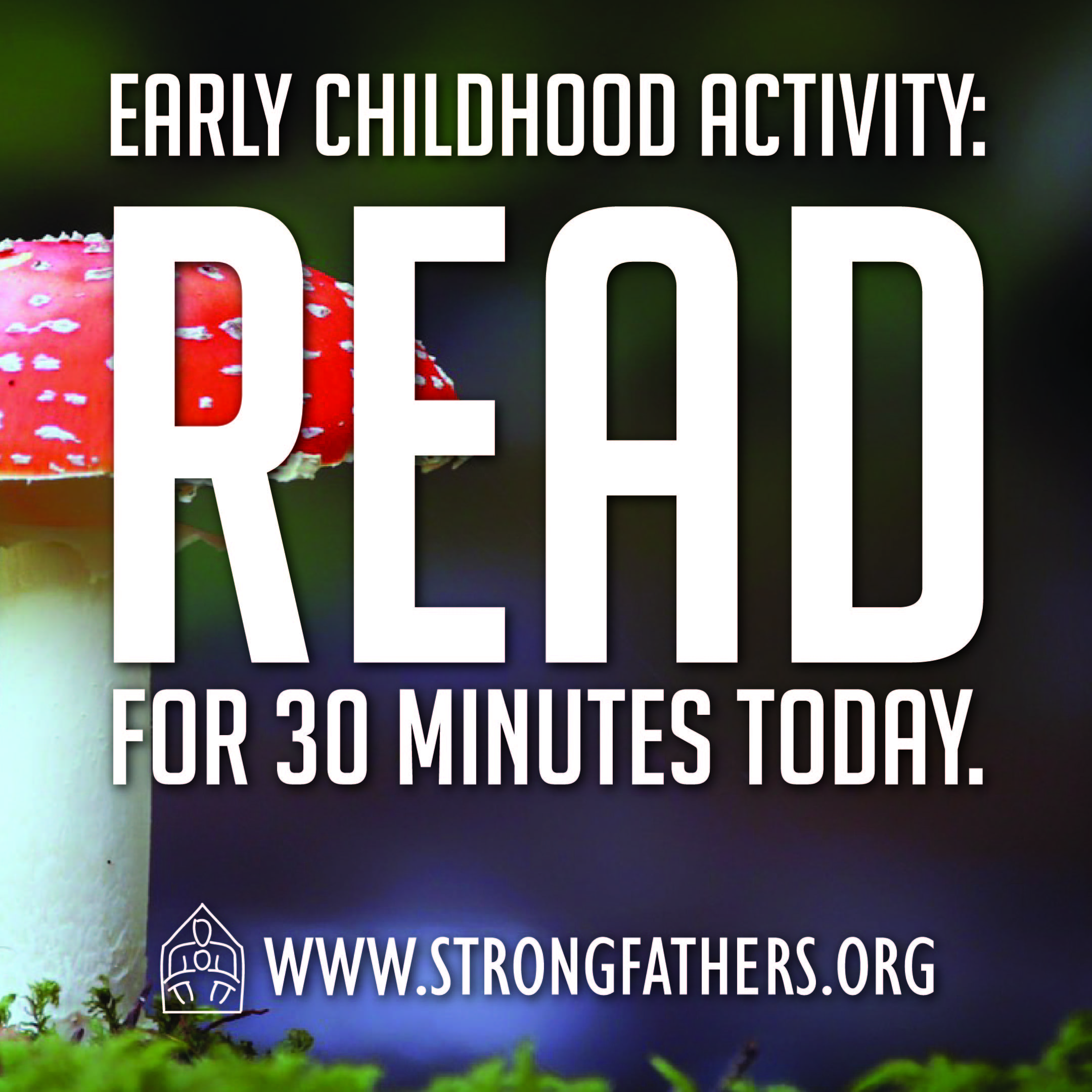 Read for 30 minutes today