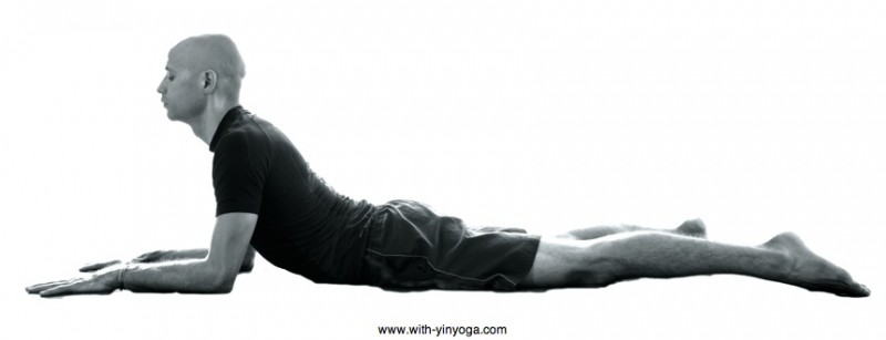 Sphinx Yin Yoga pose
