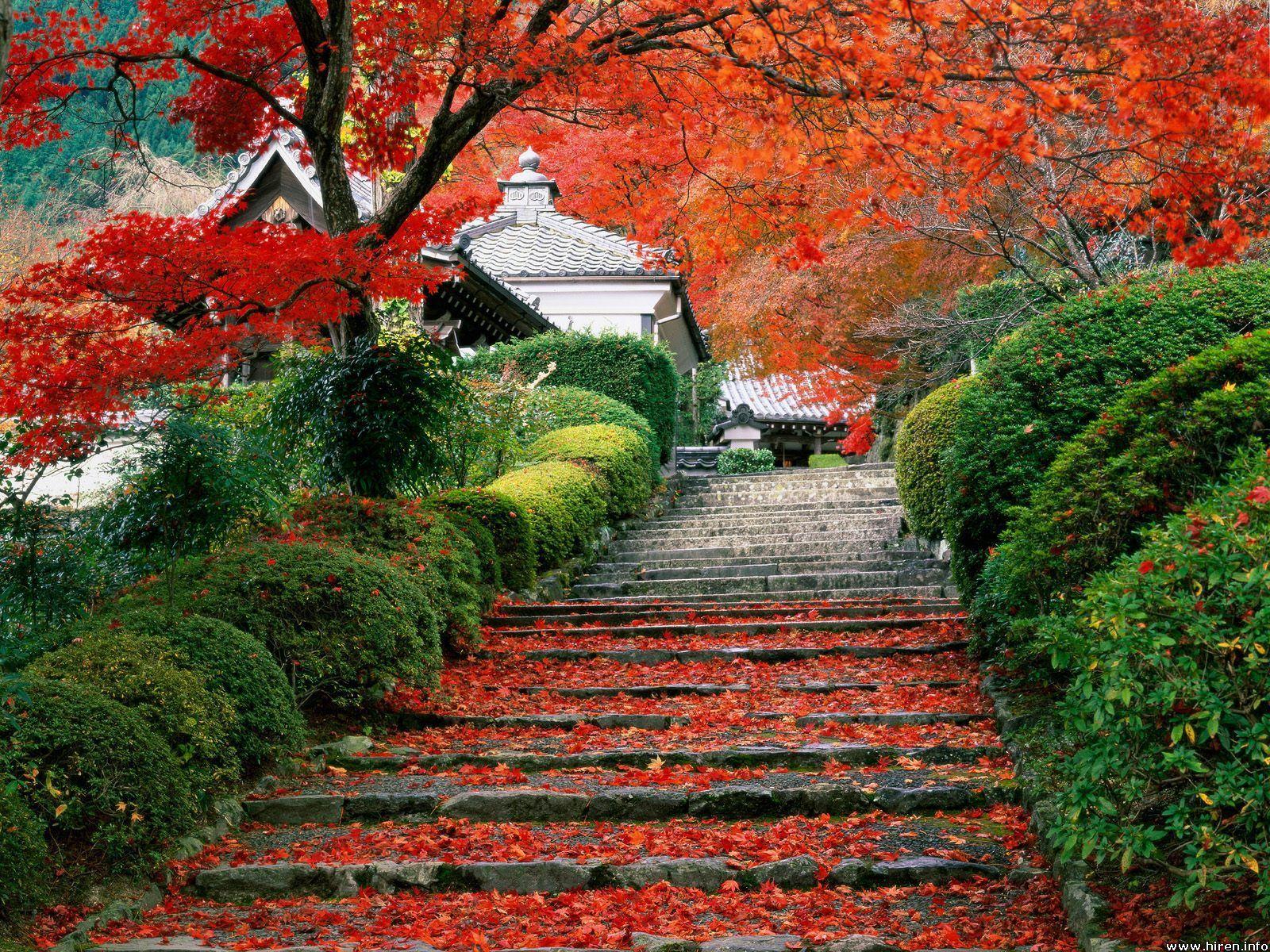 -beautiful-Japan-beautiful-places-20150791-1600-1200.jpg