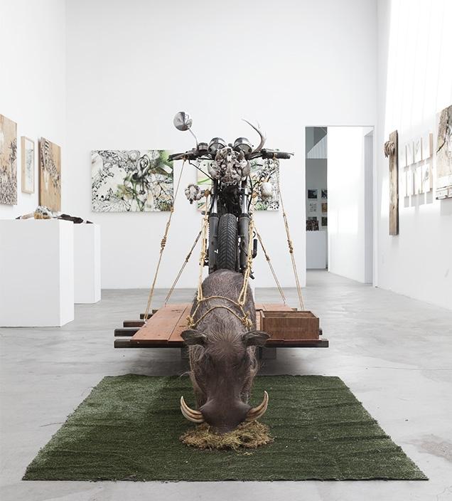Shooting Gallery 2014