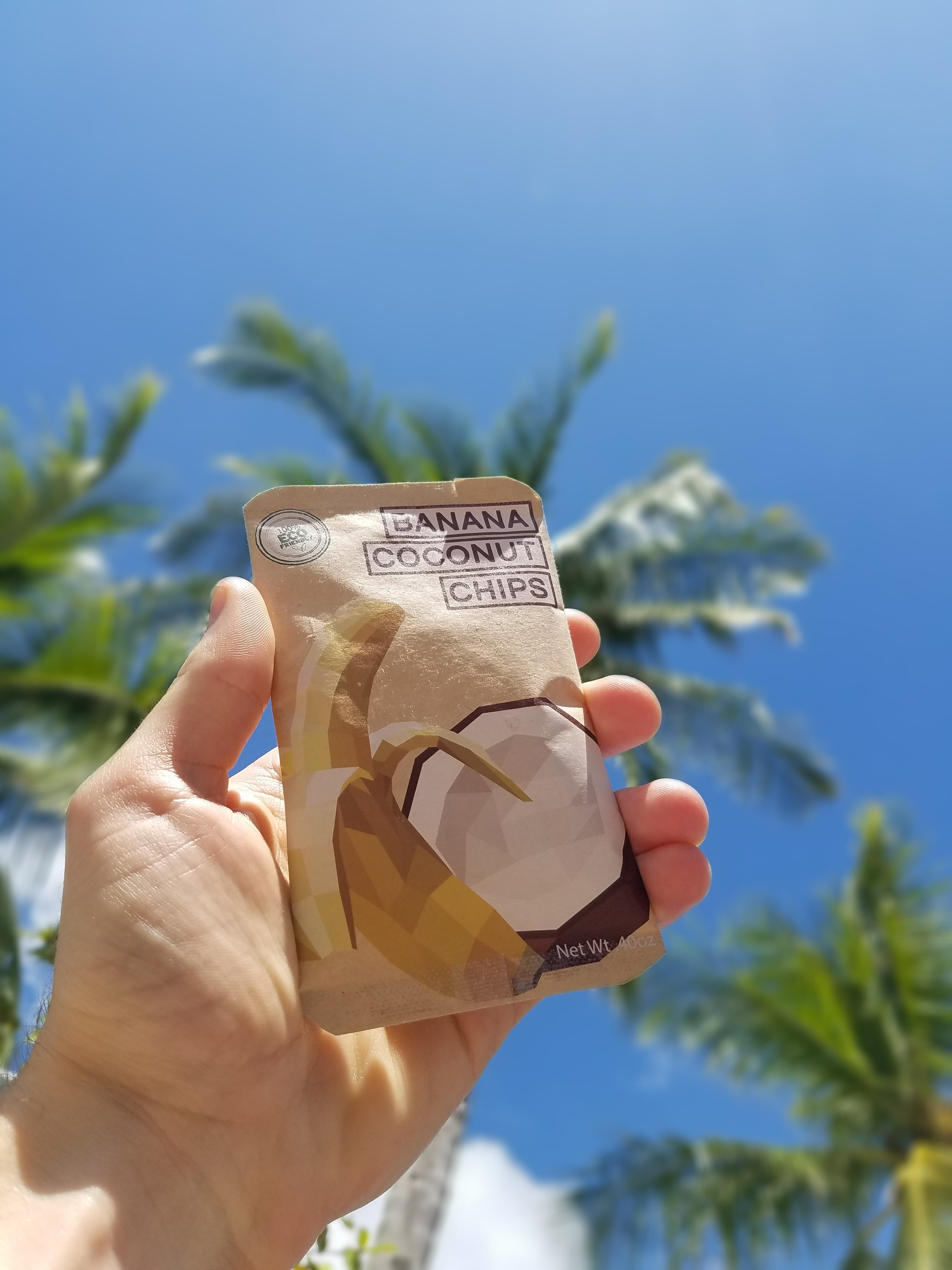 Coconut Trees and Chips