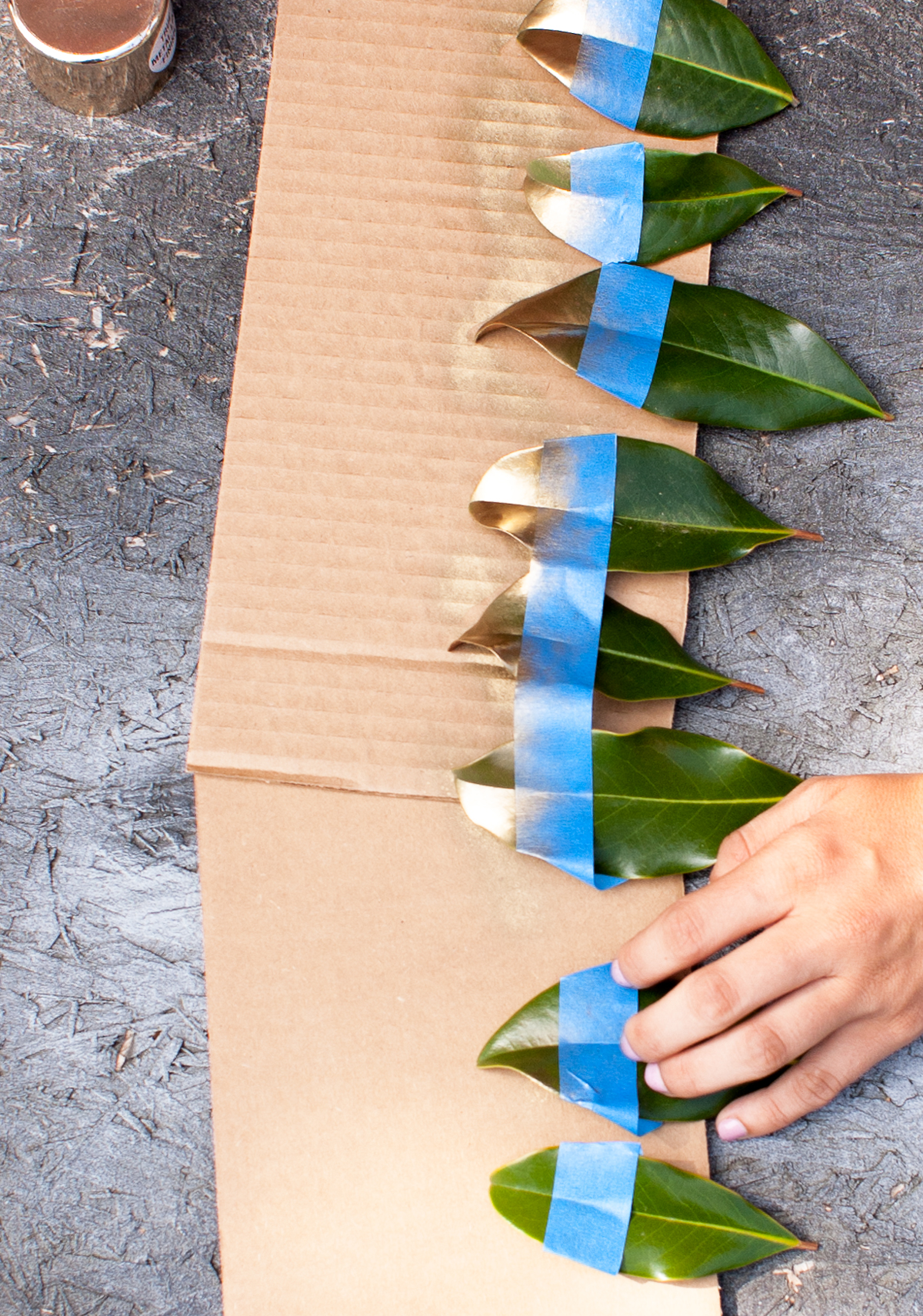 magnolia-spray-paint-caligraphy-spray-painting-(1-of-1).jpg