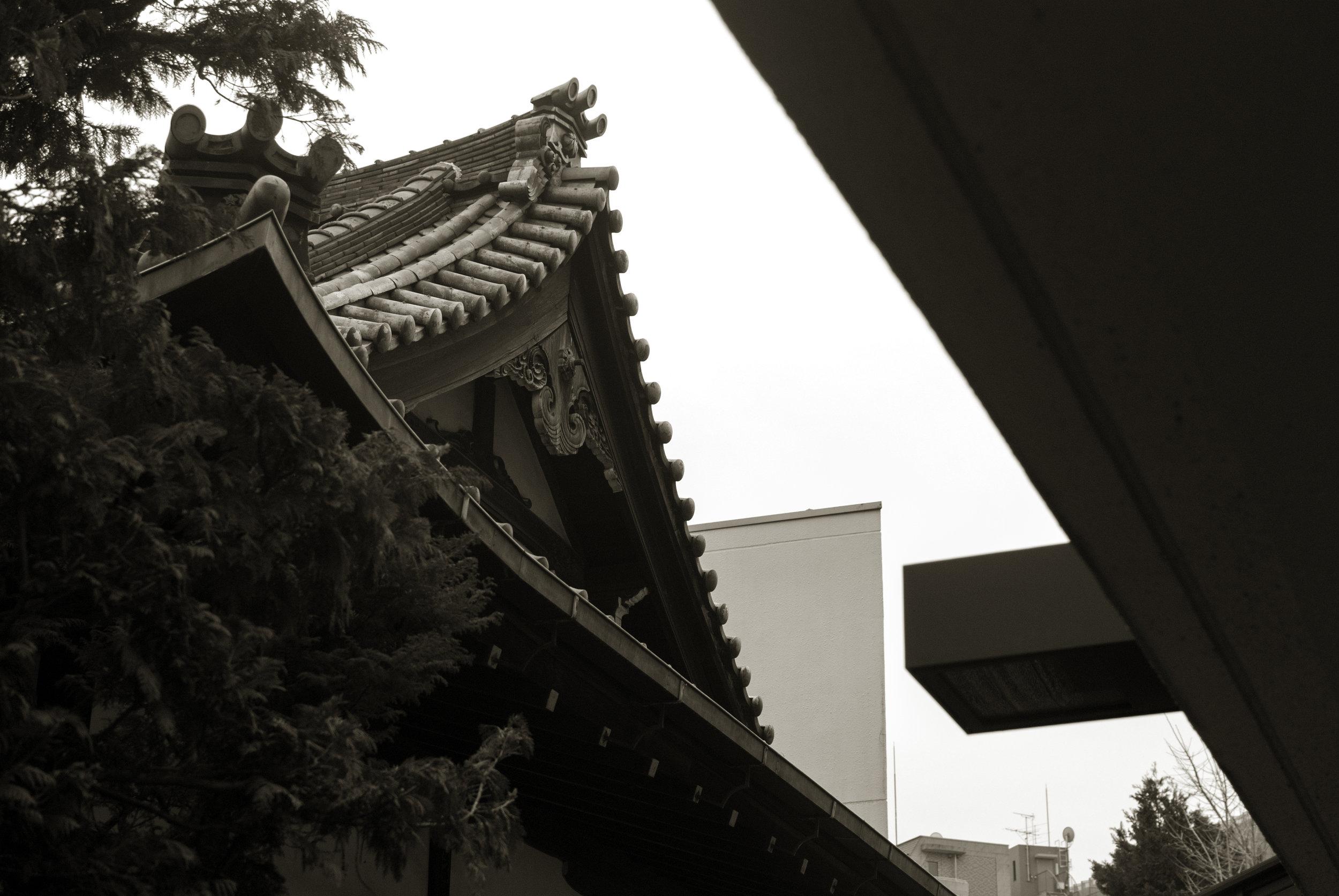 Roof_003.jpg