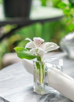 Napkin Holder Flower Vase Set Of 4 The Garden Room Cafe At Shoogie Boogies