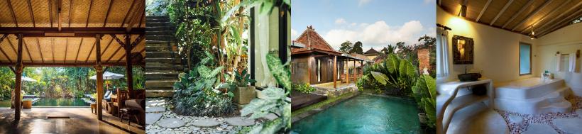 Bali Retreat 2019-3.png