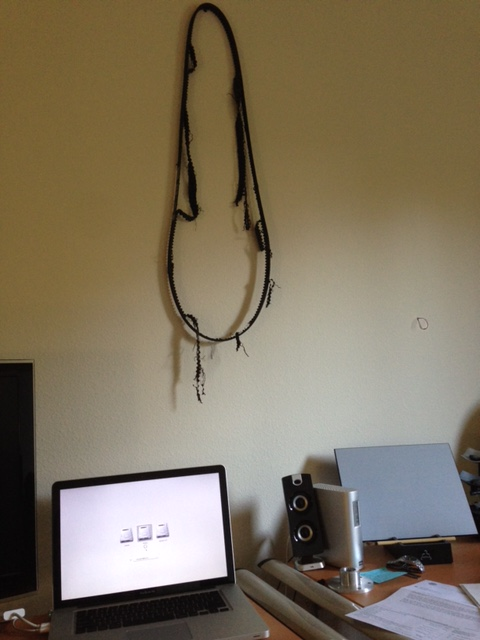 I hung the shredded belt on my bedroom wall as a trophy