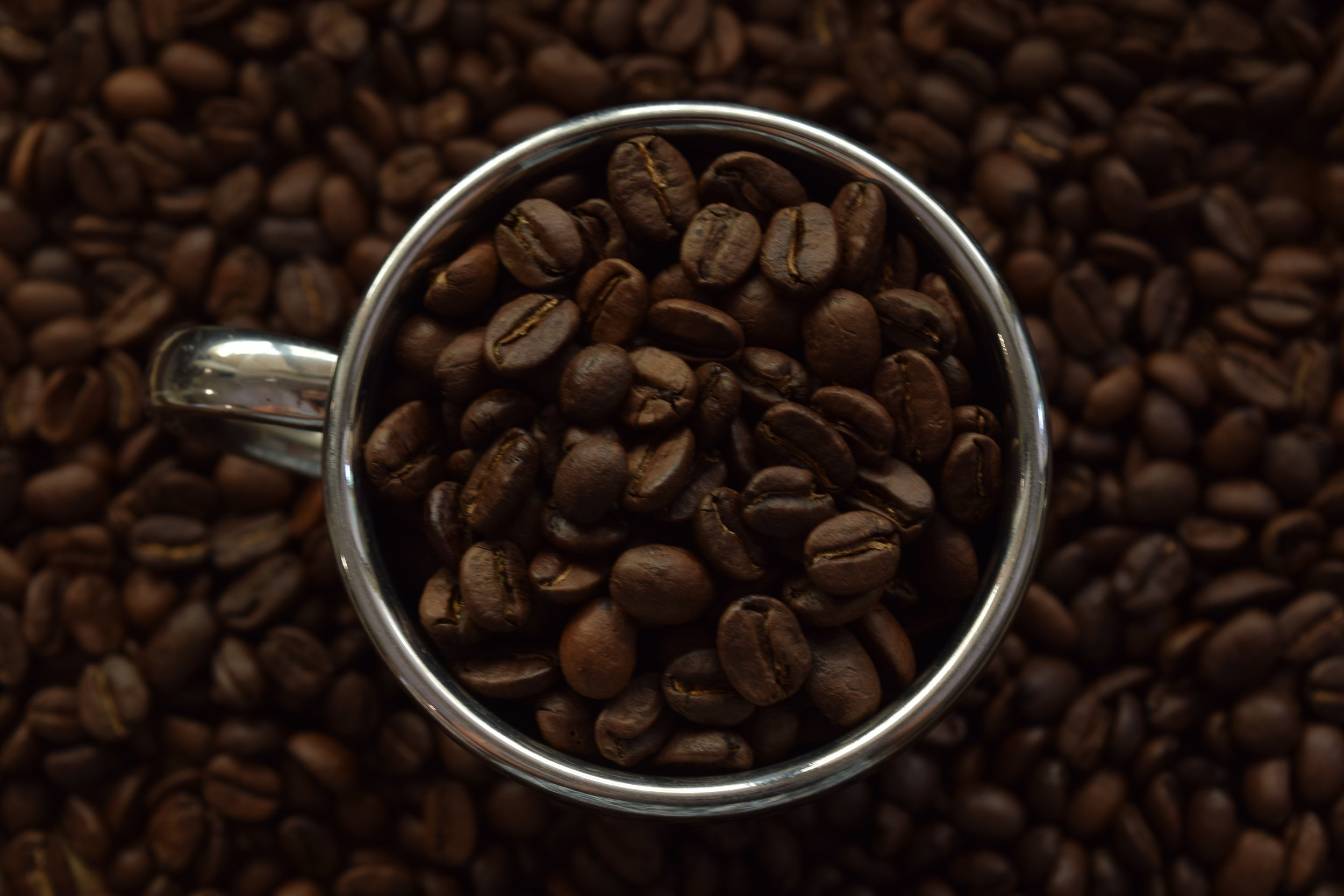 Roasted coffee beans in stainless cup