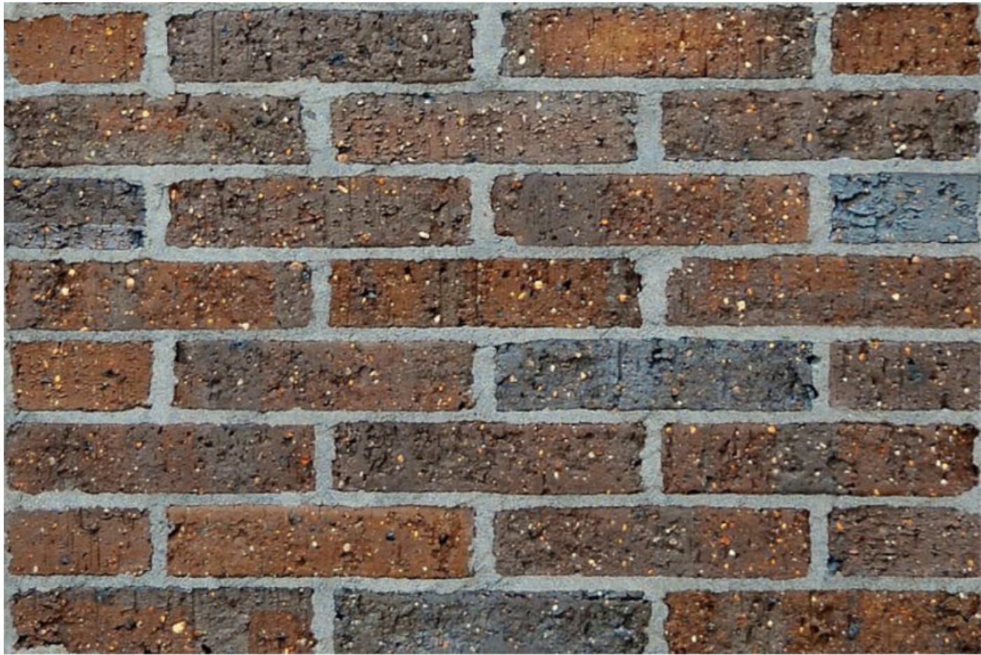 50mm bricks / Bursaria