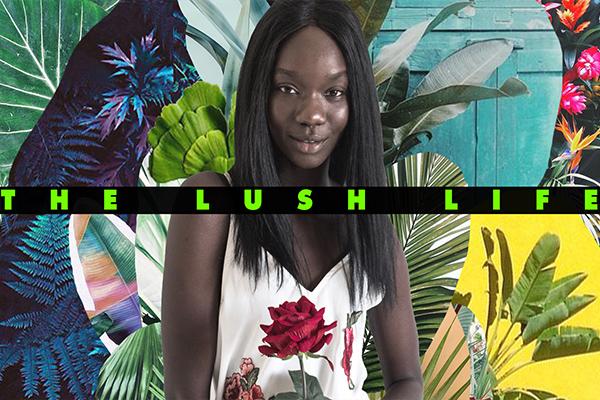 The Lush Life