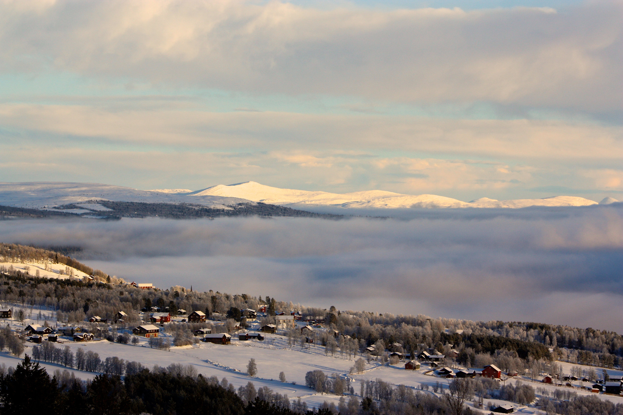 Foto: Tori Virik Nøvik