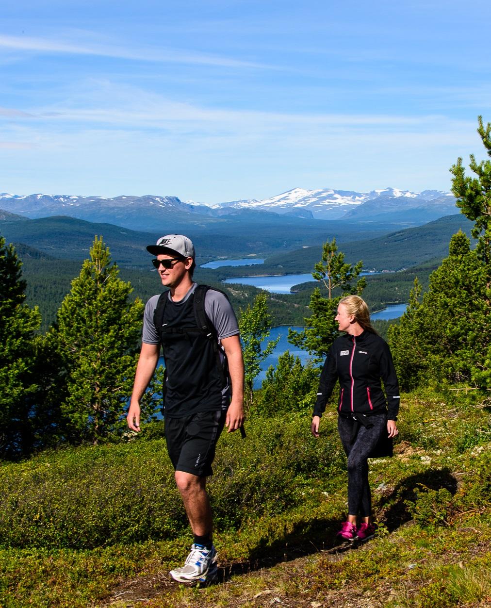 VANDRE I FJELLET.   Fine turstier for store og små,  i skog og fjell.