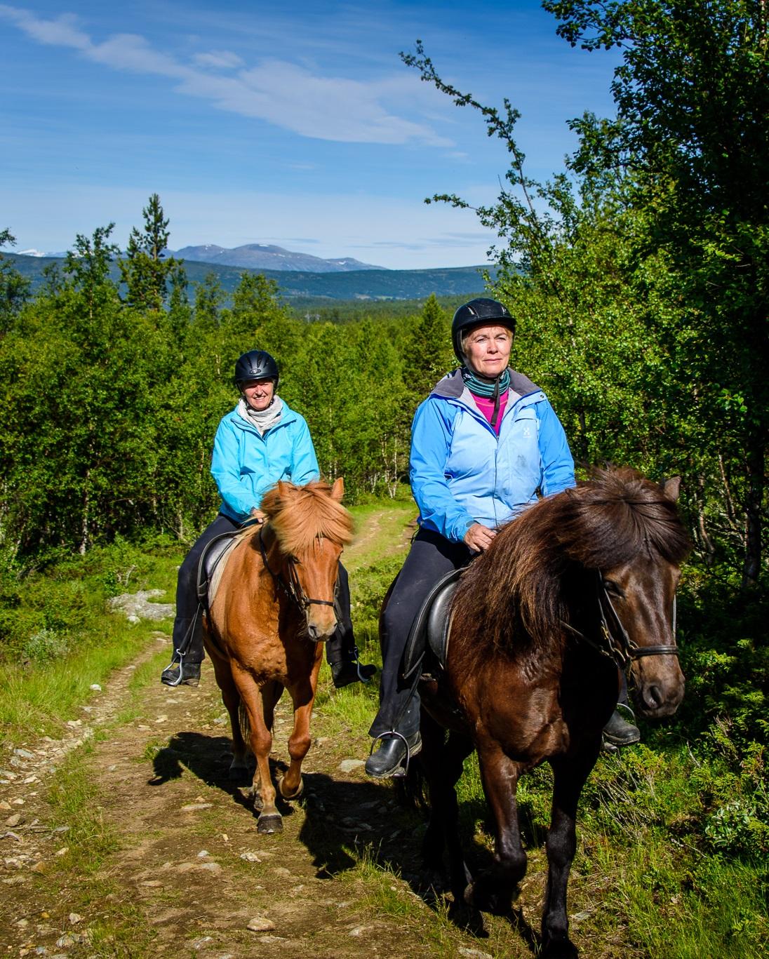 Rideturer i fjellet og rideundervisning på bane