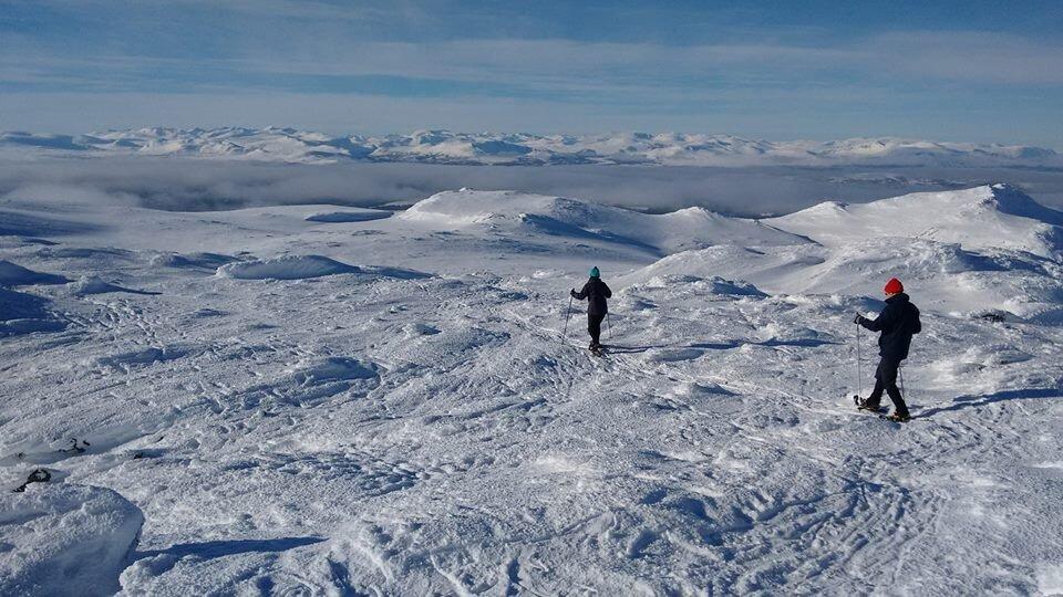 TRUGETUR      Ikke helt trygg på ski - eller vil prøve noe annet ? Hva med en trugetur?  Det kan bringe deg helt til toppen av Ruten 1517 moh!