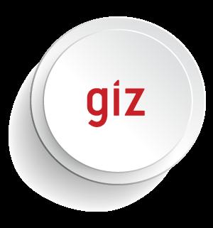 11-GIZ.png
