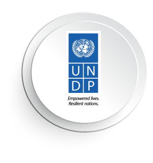 4 UNDP.png