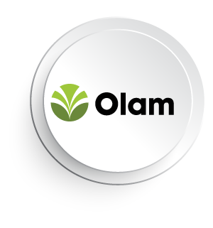 7 Olam.png