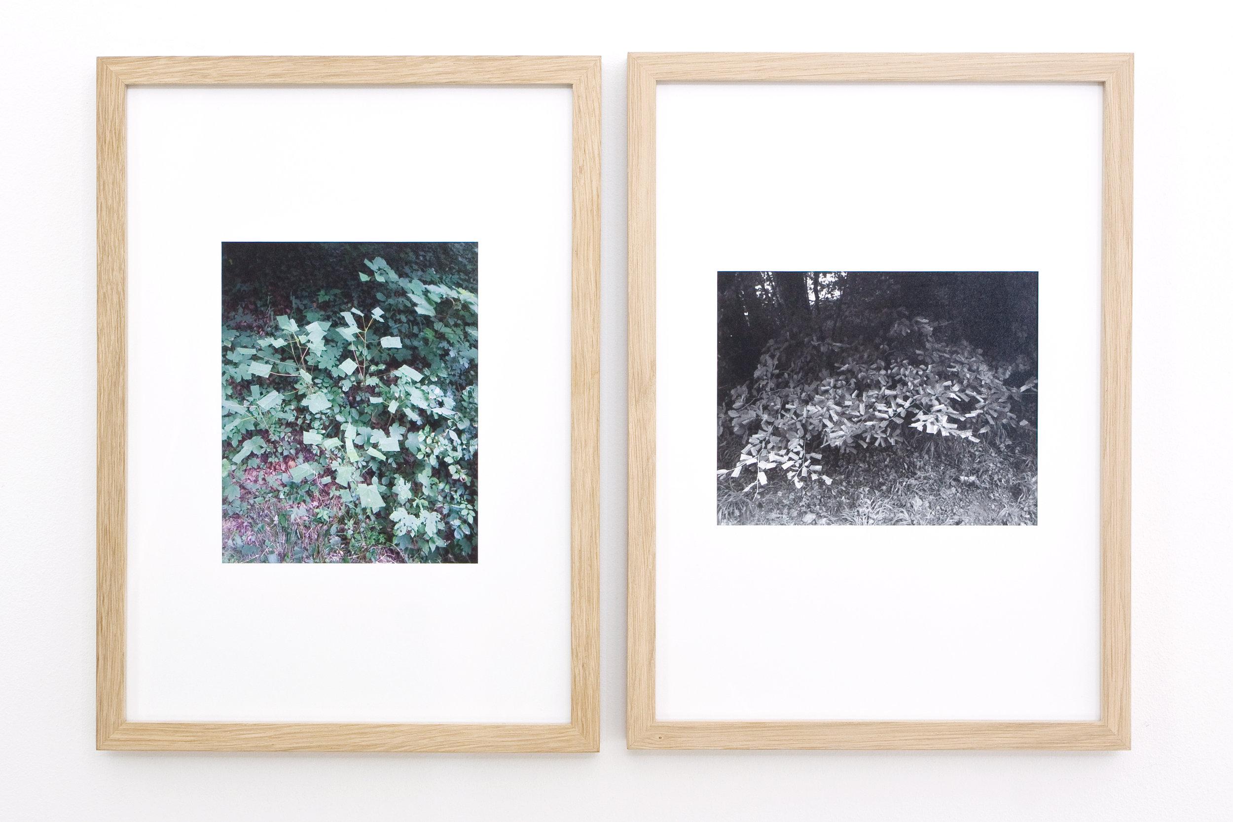 <p>Colliding Beam – Barbara Müller (installation view)</p>