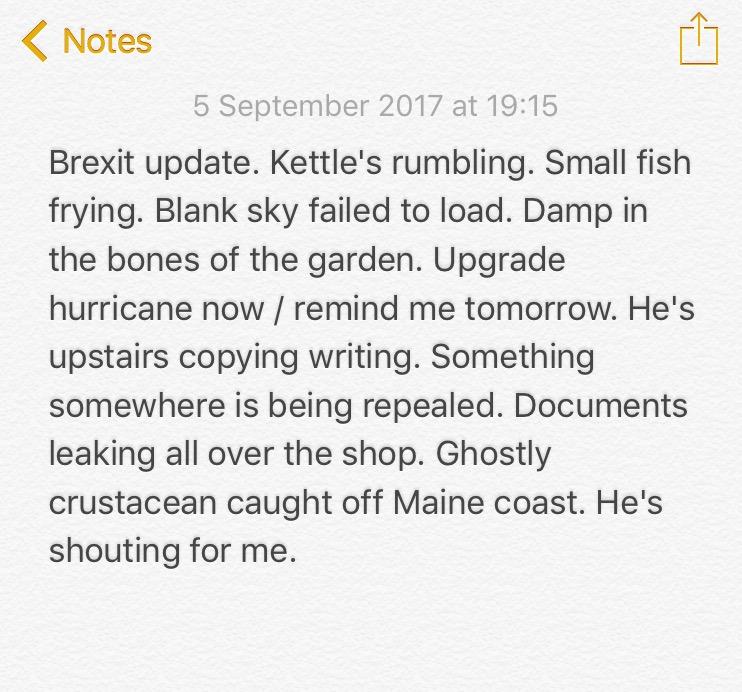 No.39 Brexit update