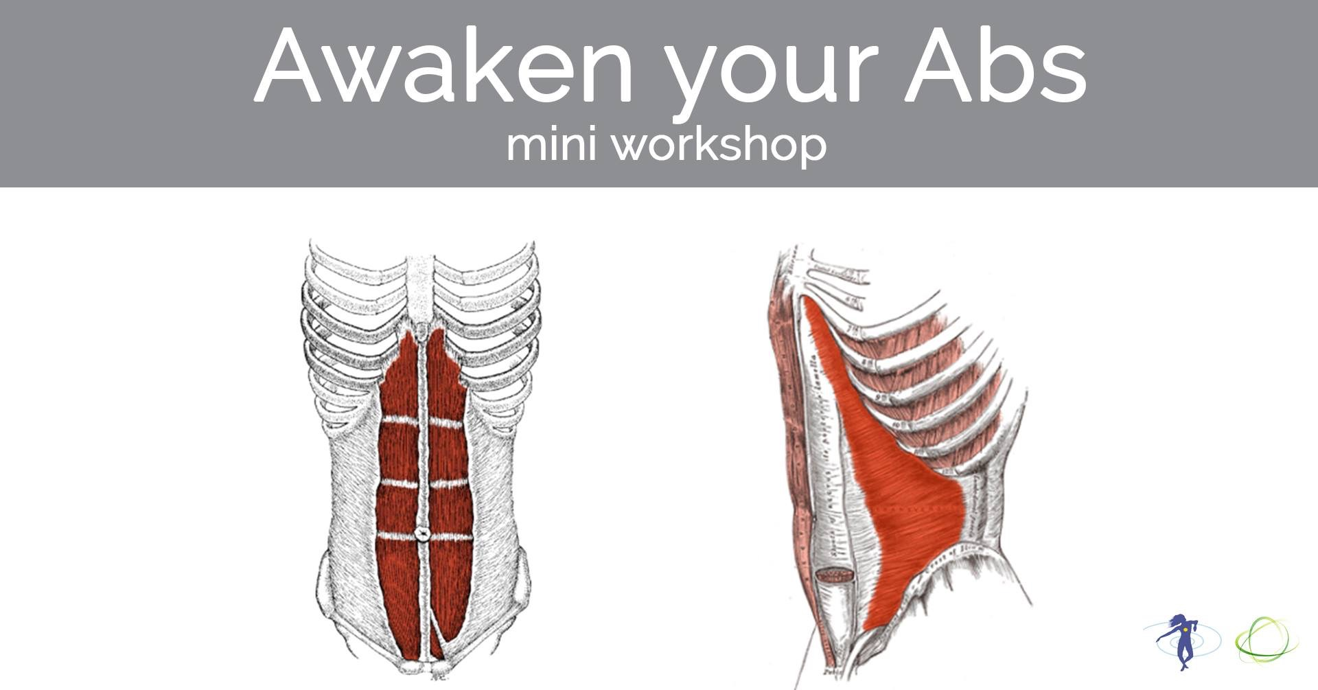 Abdominals play a role in so much more than just a good looking six pack. In this workshop you'll be introduced to the 4 layers of abdominals as well as their function and necessary integration with other parts of the body. The use of balls, bands and embodiment will have you leaving with a profound new appreciation for these body wall muscles.  Thursday, 16 May 2019 from 13:30-14:30: click  here  to reserve your spot.