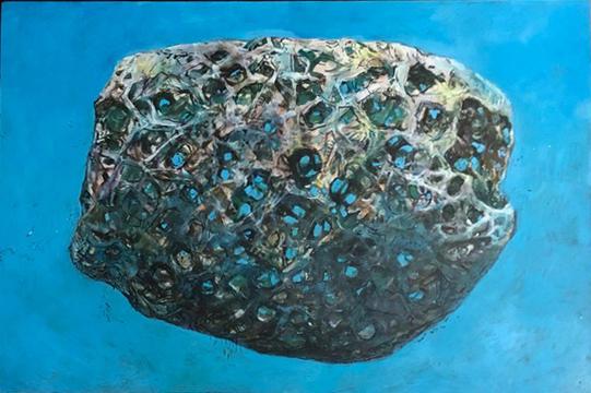 reef egg.jpg