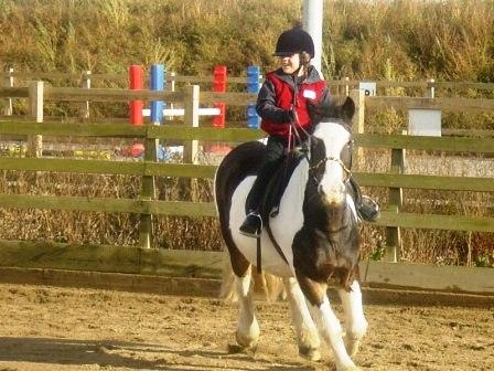 Shopland Equestrian Centre