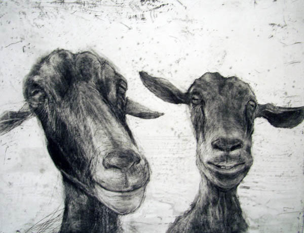 Two Goats, Etching