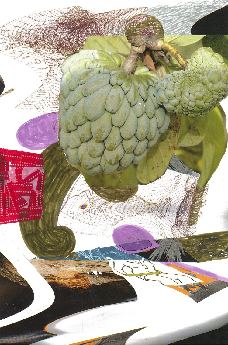 """Fruited, D  16 X 10""""  collage, ink, paper tape, archival paper"""