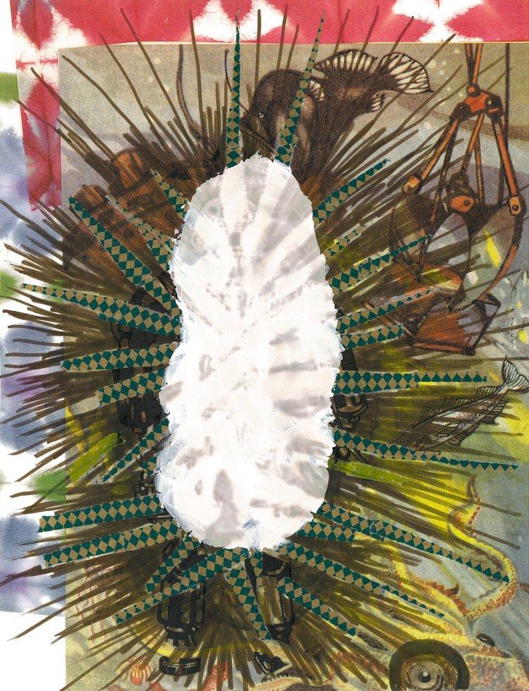 "Trilobite  11 X 8.5""  collage, paper tape, ink, archival paper"