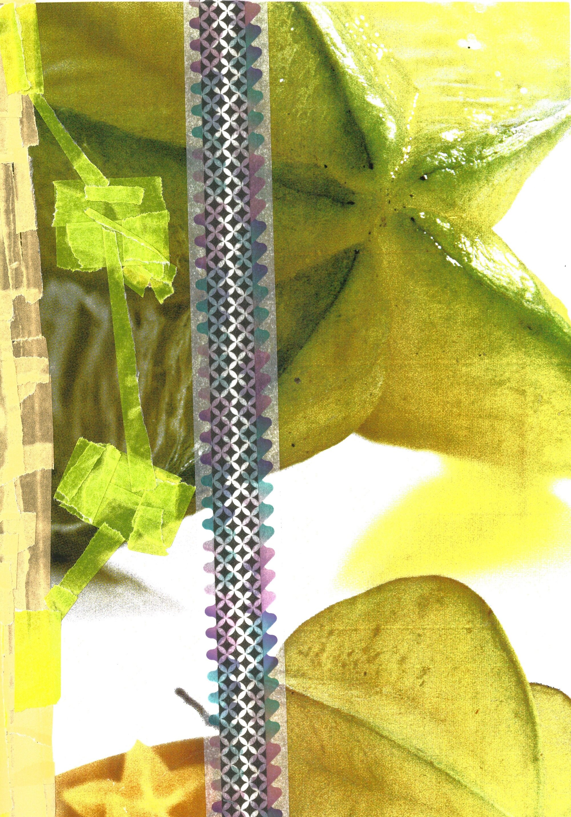 Fruited, R  paper tape, photo montage on archival paper
