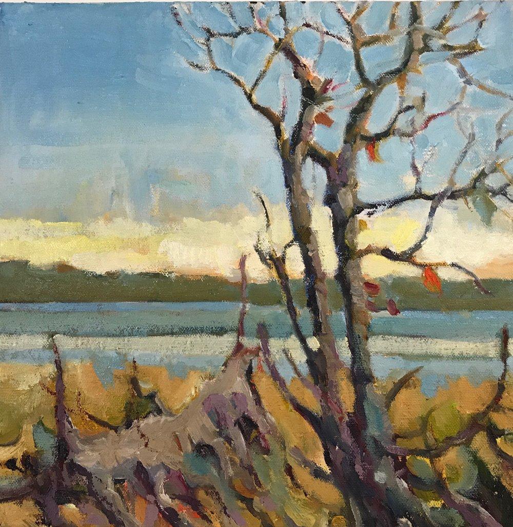 Great Bay, oils, 12 x 12